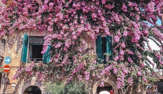 ◆季節の変わり目は自然な中間色が似合う◆